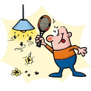 Best Mosquito Killer Reviews & Best Bug Zapper Reviews